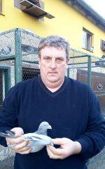 Bajtek-Tibor-Heremans-Pigeons
