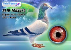 NL10-1409626-kh-Bajtek-Tibor-16