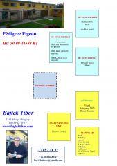 HU09-50-41588-KT-PED-min