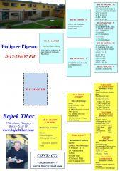 HU17-D-254697-KH-PED-min
