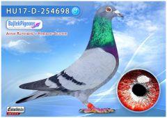 HU17-D-254698---OKa-min