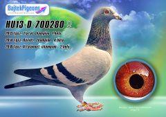 HU13-D-700280-kt-Bajtek-Tibor-17